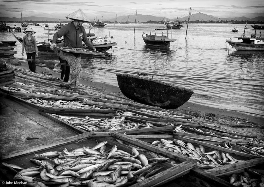 VN Fishing JPM-12