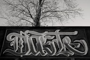 UrbanTrees_01